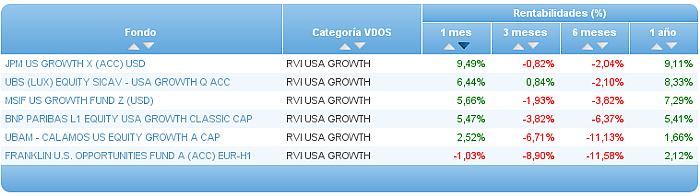 renta variable internacional usa growth rentabilidad un mes